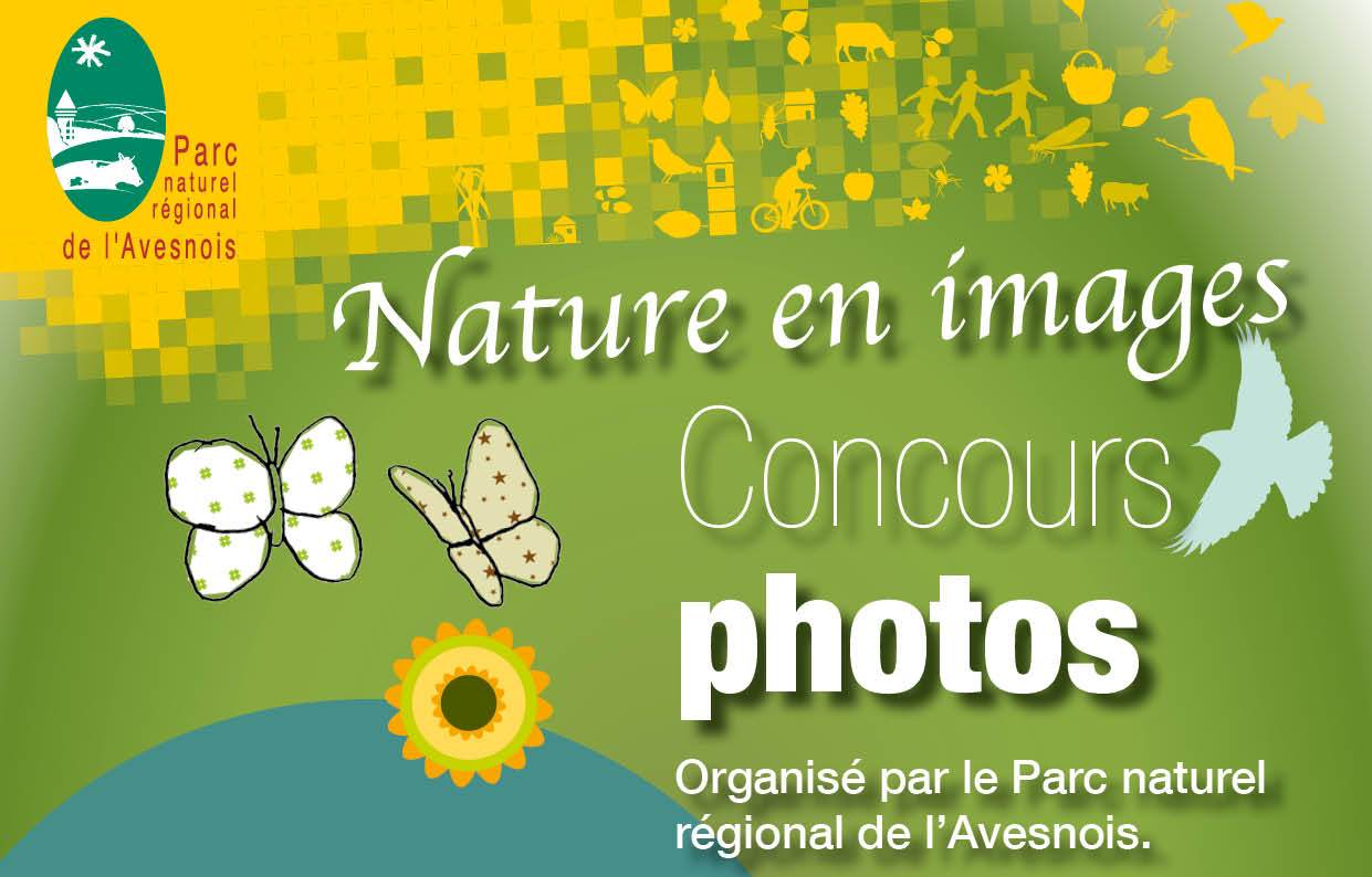 concours photowebs